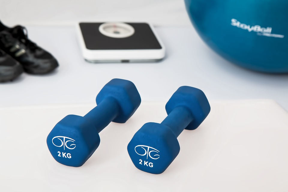Two blue hand weights on the floor with scales in the background