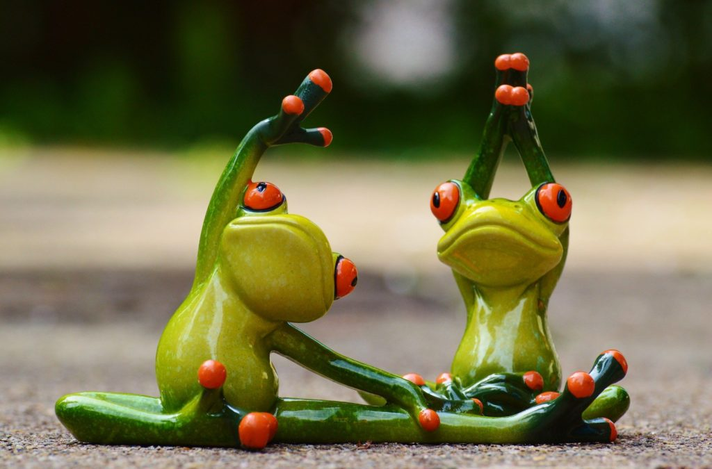 Two green china frogs pretending to stretch