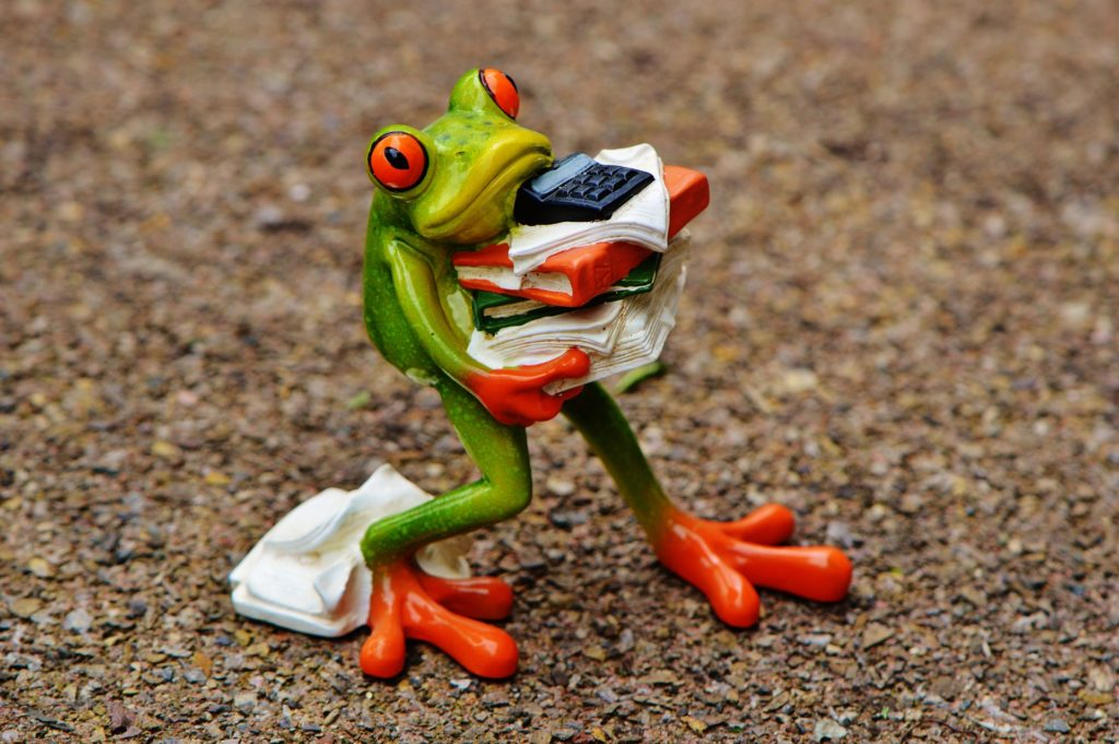 A china frog carrying books, paper and a calculator