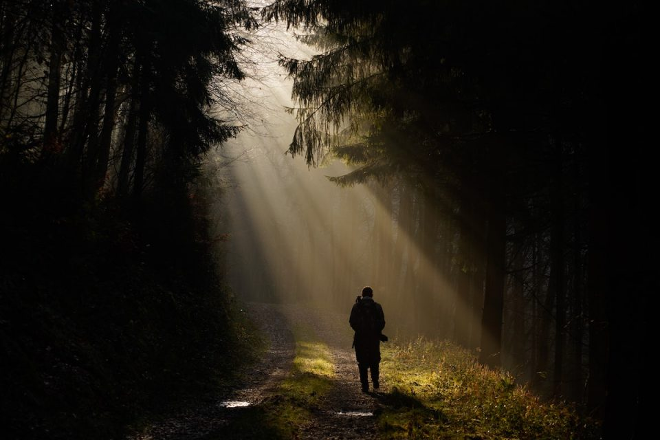 person walking in nature with the sunlight streaming. 6 tips to keep your mood boyant
