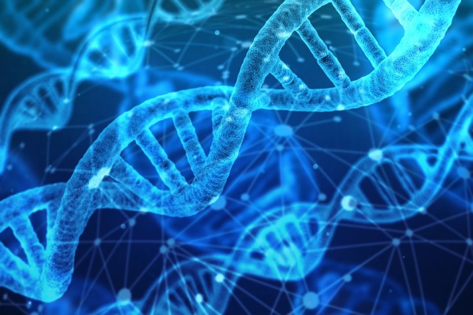 dna-genes-wellbeing-health-sleep-bodyshotperformance-rest-mentalhealth-fitness-energy
