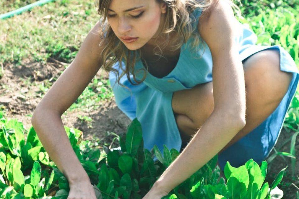 gardening-growingvegetables-organic-wellbeing-health-mentalheath-bodyshotperformance