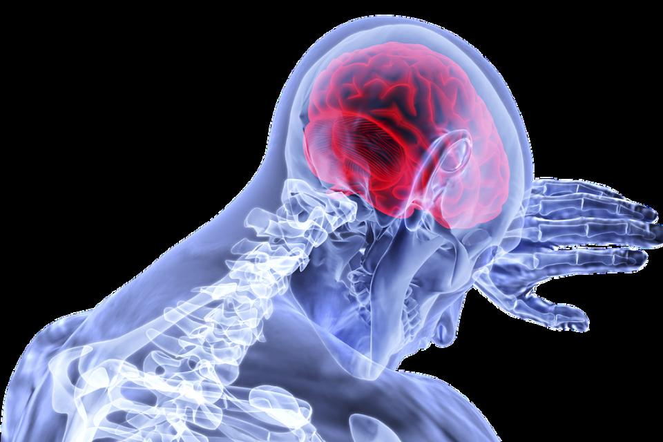inflammation-pain-guthealth-bodycomposition-wellbeing-health-stress-sleep-bodyshotperformance