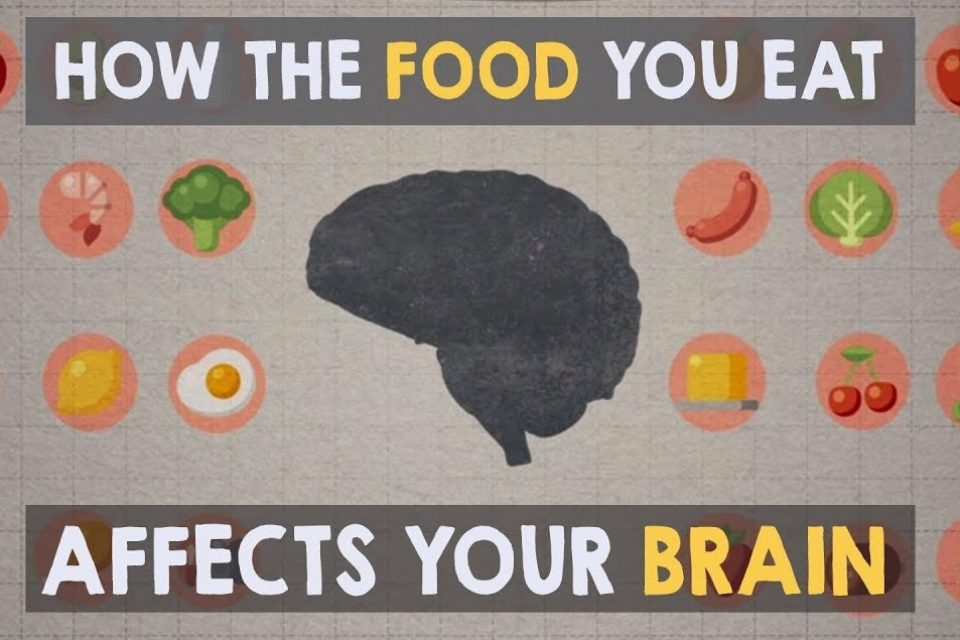 mia nacamulli-how food affects the brain