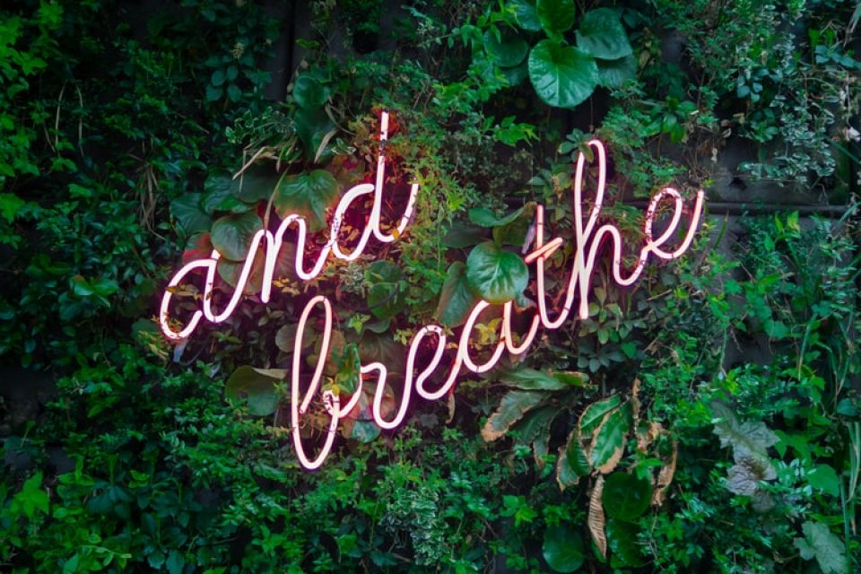 A highlighted sign saying and breathe against a bush